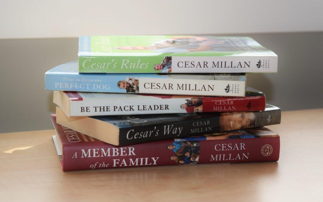 Réflexions sur Cesar Millan
